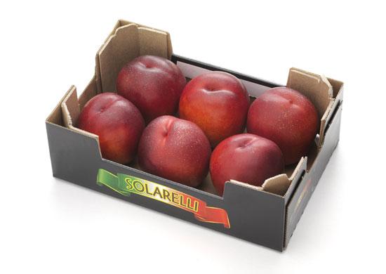 Nettarine 6 frutti Solarelli