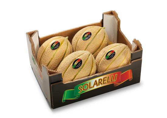 Melone retato con fetta Solarelli