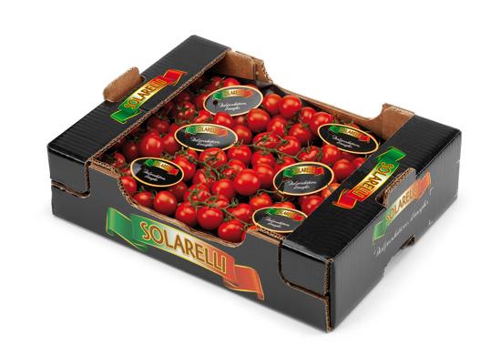 Pomodoro cherry Solarelli