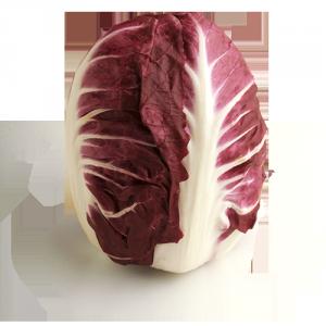 radicchio rosso di Verona IGP Solarelli