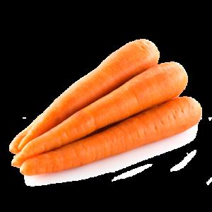 carote solarelli