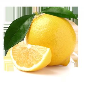 limoni della Sicilia Solarelli