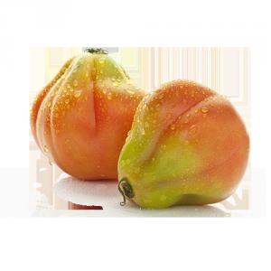 pomodoro cuore di bue Solarelli